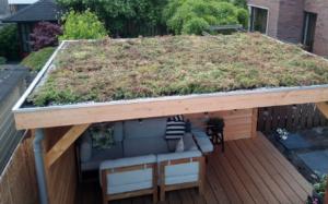tuintips groen dak